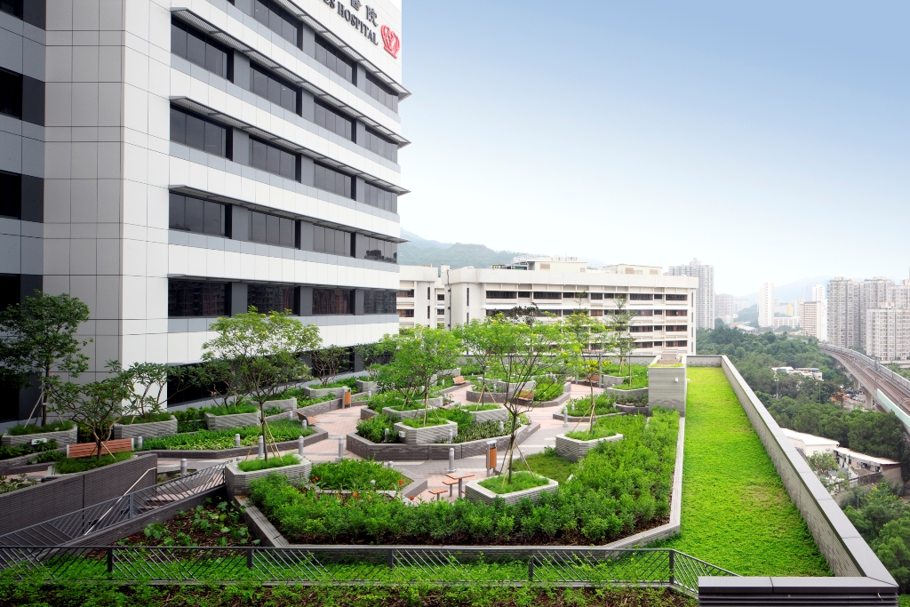 Podium Roof Garden