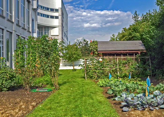 Allotment Garden On The Technomuseum Zinco Gmbh Archello