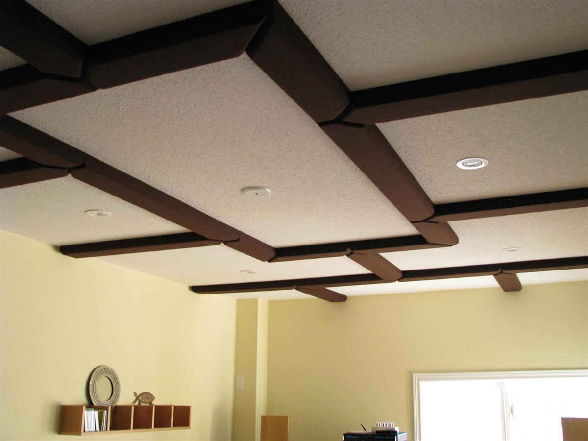 Acoustic Coffered Ceiling By Acoustic Sciences Corporation