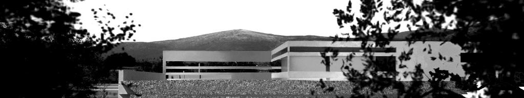 LS/Architecture&Strategies