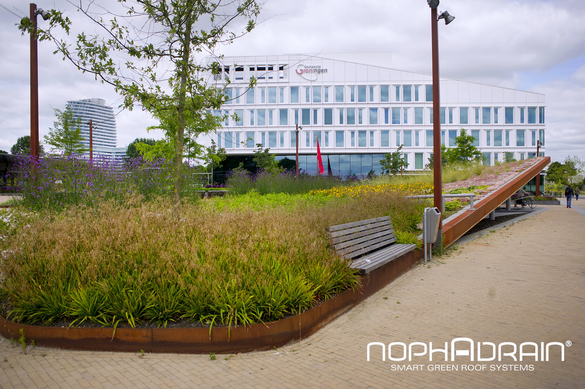 extensive green roof system by nophadrain archello. Black Bedroom Furniture Sets. Home Design Ideas
