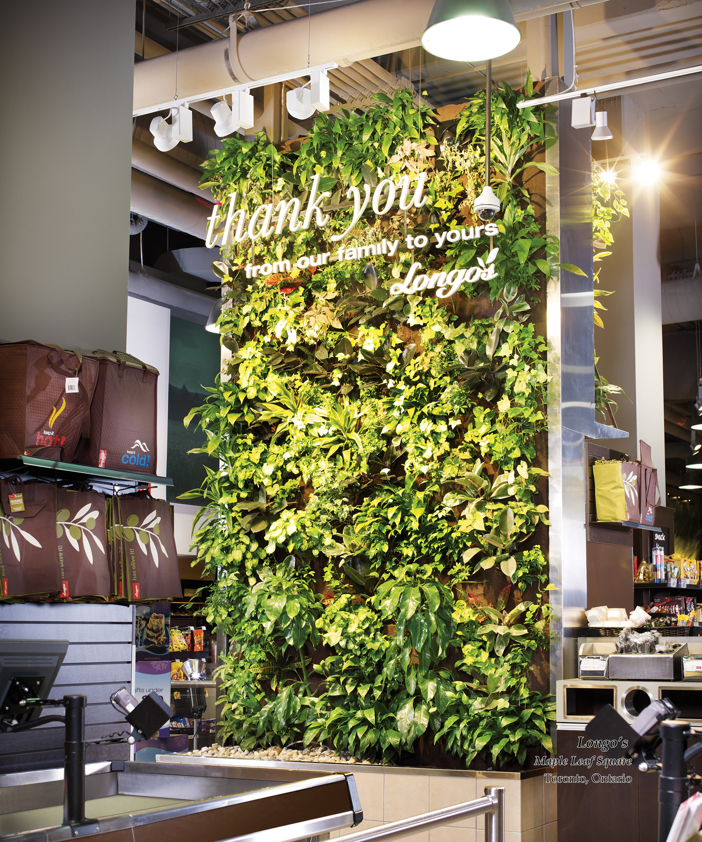 Nice Living Green Wall Toronto Vignette - Wall Art Collections ...