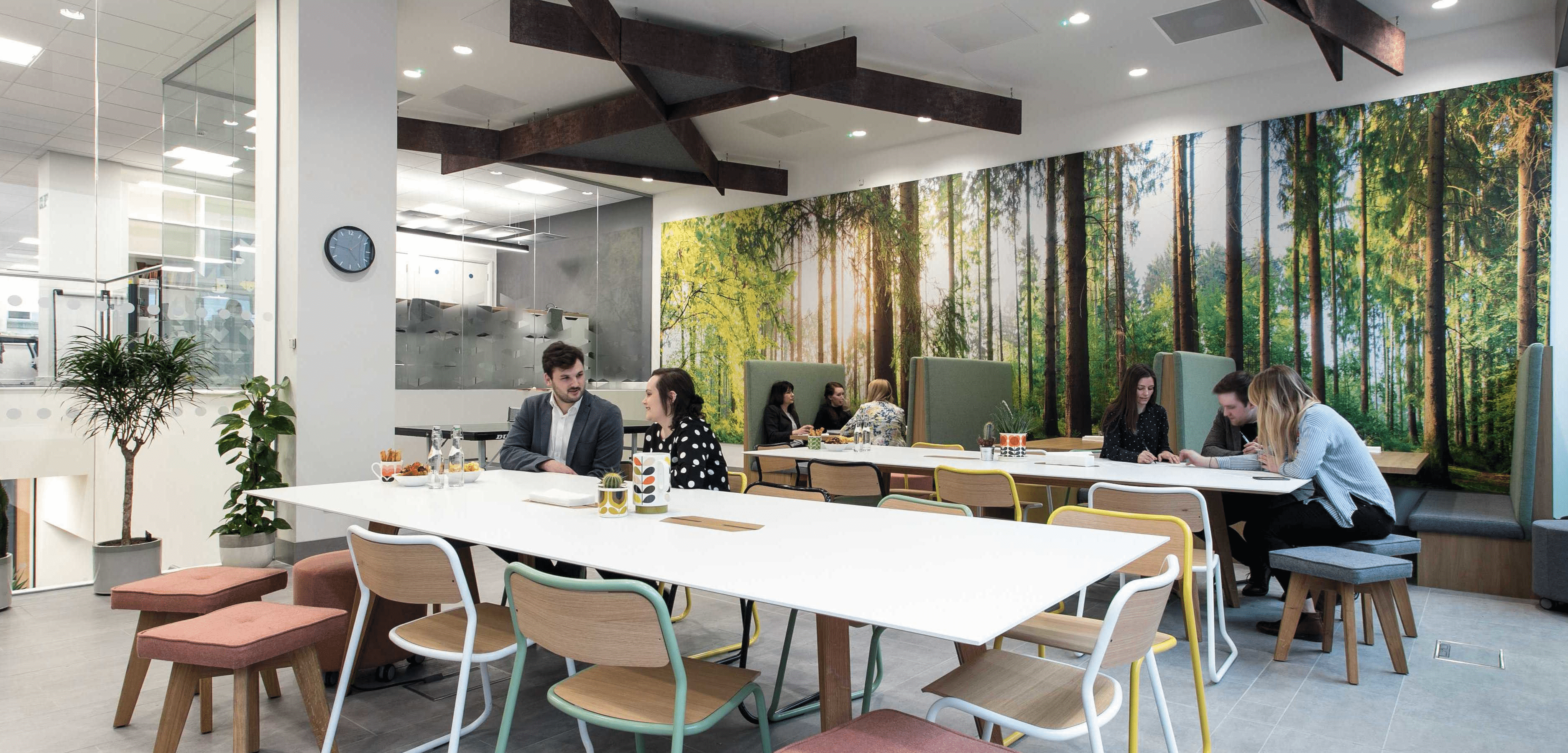 Main breakout area with forest wall graphic.