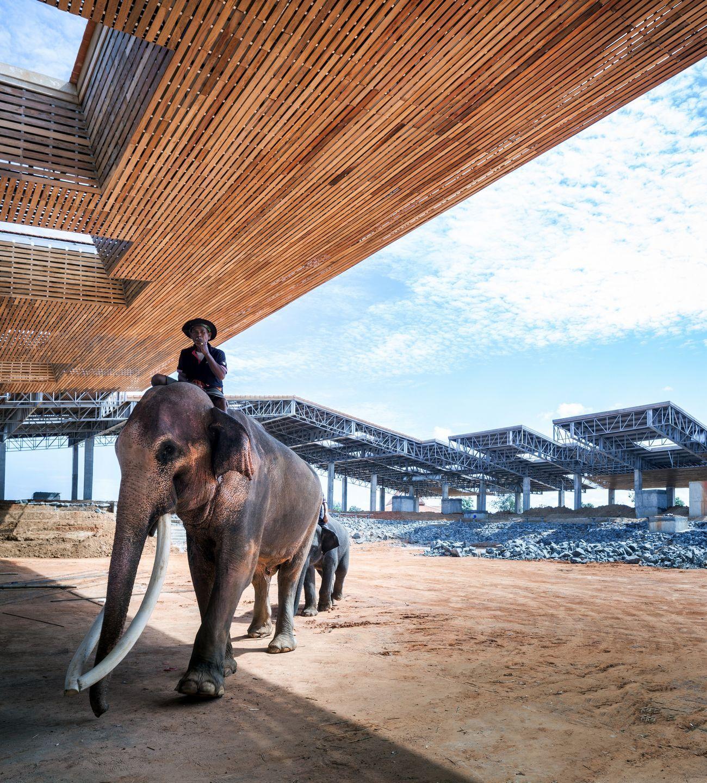 elephant-cover.jpg
